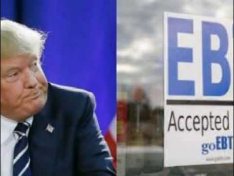 Trump Just Signed New Law Making Drug Tests Mandatory For Welfare: Look What Immediately Happened!