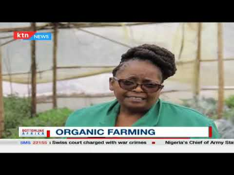 Organic Farming becoming a popular trend among farmers in the country | Bottomline Africa