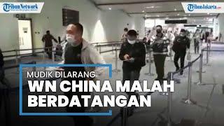 Saat Larangan Mudik, Lagi-lagi Puluhan Warga China Malah Mendarat di Bandara Soekarno-Hatta