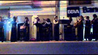 preview picture of video 'luceros de san julian (son de la negra)'