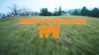 Field Flight // Armattan Marmotte 5 DJI Edition / DJI FPV