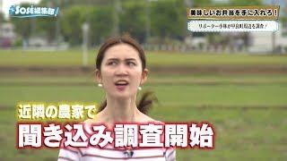 2019年5月10日放送分 SOSE編集部