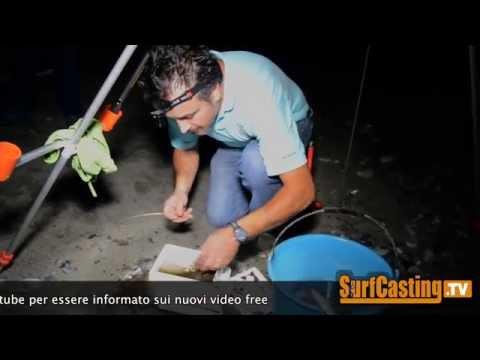 Pesca di video di una pertica su un imbroglione