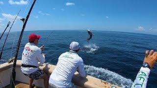 A верхняя ахтуба рыбалка без границ