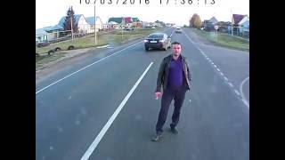 пьяный олень на дороге