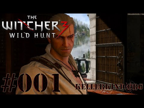 The Witcher 3 [HD|60FPS] #001 Beginn einer neuen Reise ★ Let's Play The Witcher 3