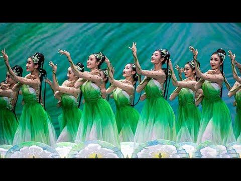 ריקוד היסמין: מופע ריקוד סיני מרהיב לכבוד האביב