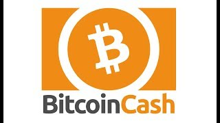 What Is Bitcoin Cash? The Basics - For Beginners