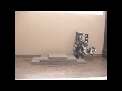 I Feel Sorry for Lego Robot