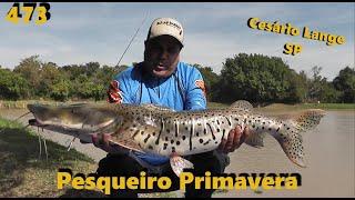 Conheça o Pesqueiro Primavera de Cesário Lange - Fishingtur na TV 473