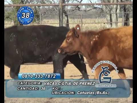 Lote VC CGP - Cañuelas
