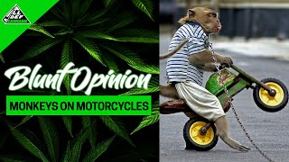 Monkeys On Motorcycles | Blunt Opinion | Ep. 2 Feats Teddy Ray | #AllDefCannabis