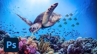 Vidéo de Adobe Photoshop