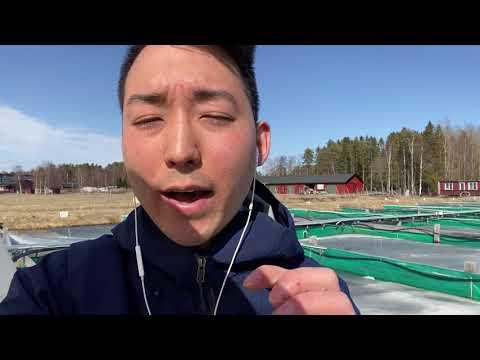 Film: Shuntaro forskar om klimatförändringar