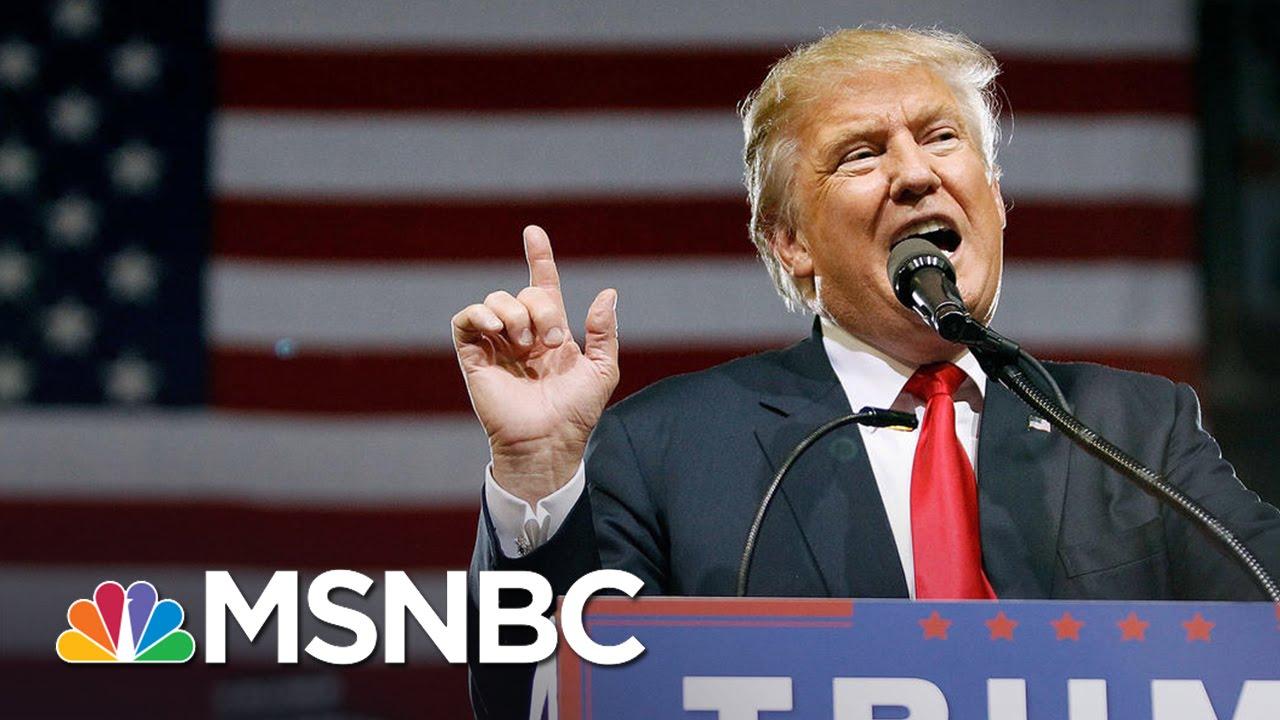 Donald Trump: 'France Is No Longer France' | MSNBC thumbnail