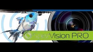 Как заменить три IP-камеры на одну с углом обзора 360 градусов