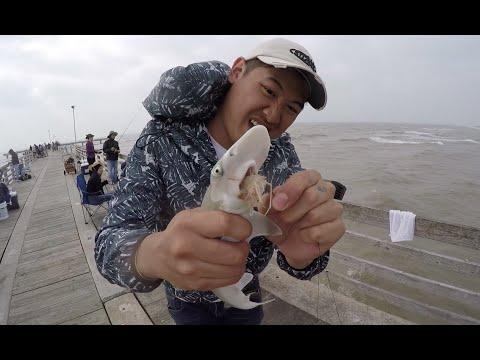 TEXAS Pier Fishing: Catch fish Fast!