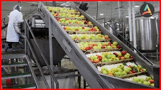 Amazing Fruit Packaging Process - Fruit Processing Process Machines And Processes