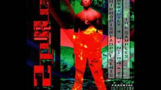 2Pac - Song: Holla If Ya Hear Me - Album: Strictly For My N.I.G.G.A.Z.