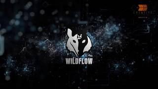 Wild Flow Futuristic Logo Reveal