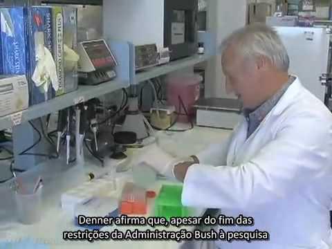 Caldo de aveia para diabéticos
