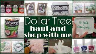 Dollar Tree Haul and Shop With Me • even more new items!