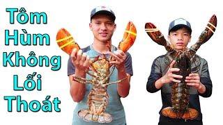 Hữu Bộ   Tôm Hùm Không Lối Thoát Kẹp Phô Mai   Grilled Alaska Lobster