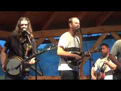 Taverna newgrass - TAVERNA - Sally