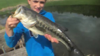 Small pond HUGE bass