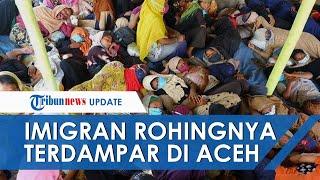 Lagi, 295 Imigran Rohingya Terdampar di Aceh, Kini Direlokasi ke BLK Lhokseumawe