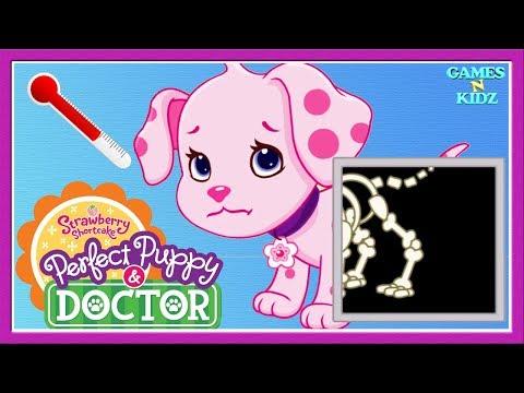 Strawberry Shortcake Perfect Puppy Doctor Fun Animals Care Kids