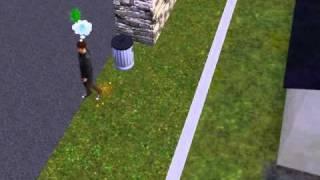 Los Sims 3 Triunfadores: Pateando a un Gnomo