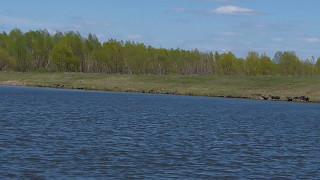 Рыбалка в радищево ульяновской области