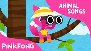 This Is the Savanna | Animal Songs | Pinkfong Songs for Children