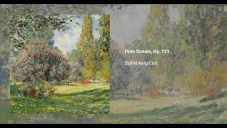 Flute Sonata, Op. 121