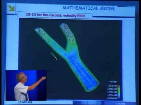 Cardiovascular Mathematics, Alfio Quarteroni, ICM2006 – Madrid