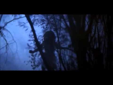 Book Trailer do livro Sombras - Série Os Guardiões