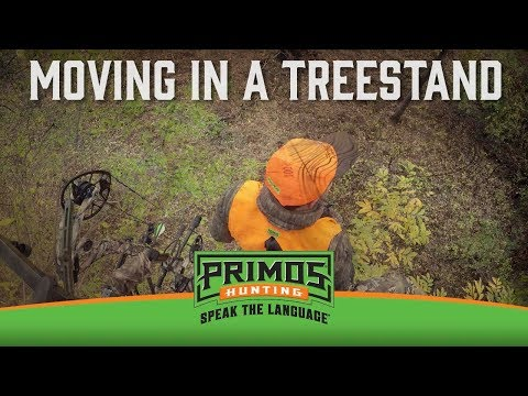 How to Move in a Treestand video thumbnail