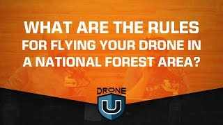 What Are the Rules for Flying Your Drone in a National Forest Area?