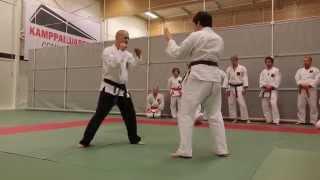 Hokutoryu Jujutsu Training Clips - Takedowns