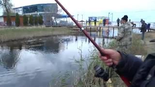 Рыбалка в анапе и окрестностях