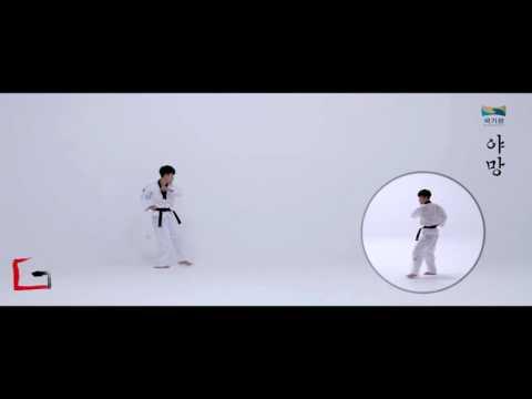 Taekwondo New Kukkiwon Competition Poomsae #2 Yamang 국기원 품새 야망 (age under 18)