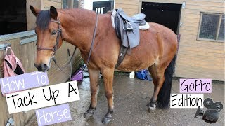 How To Tack Up A Horse | GoPro Edition