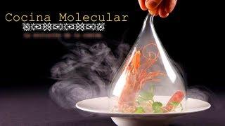 Cocina Molecular | Cuando La Ciencia Entra A La Cocina
