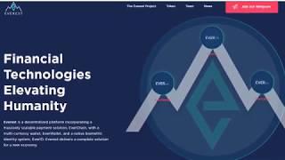 Everest - финансовые технологии будущего!
