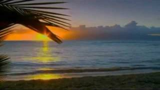 Chris Rea — All Summer Long (Shamrock Diaries)