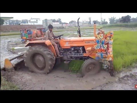 NH FIAT 480 working with Rotavator Preparing the Rice Field, Tractor Stuck in Mud