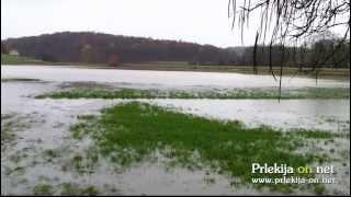Poplavljen travnik v Žerovincih