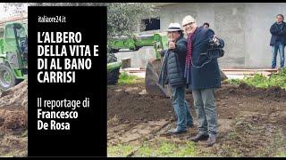 l'albero della vita e di albano carrisi - un cortometraggio di francesco de rosa