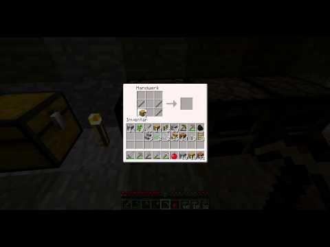 Minecraft Zauntür bauen